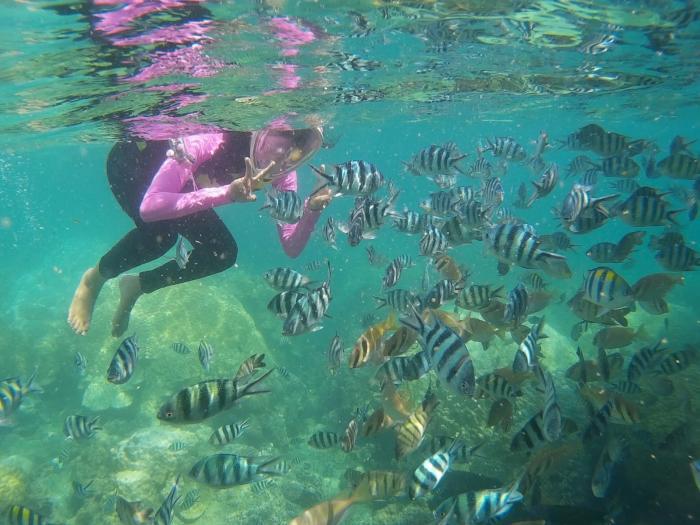 Angthong National Marine Park (From Nakhon Si Thammarat)