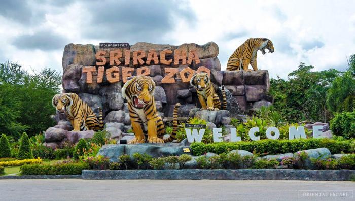 สวนเสือศรีราชา  ชลบุรี