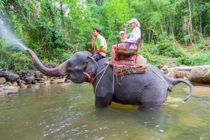 ทริปล่องแก่ง 9 กิโลเมตร + นั่งช้าง 30 นาที + เดินป่าชมน้ำตก + ถ้ำลิง + อาหารเที่ยง