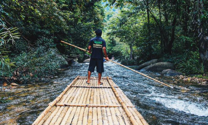 ล่องแพไม้ไผ่ + นั่งช้าง 30 นาที + อาบน้ำช้าง 30 นาที + ชมถ้ำลิง + เดินป่าชมน้ำตก +อาหารเที่ยง + ชมศูนย์อนุรักษ์พันธุ์เต่าทะเล