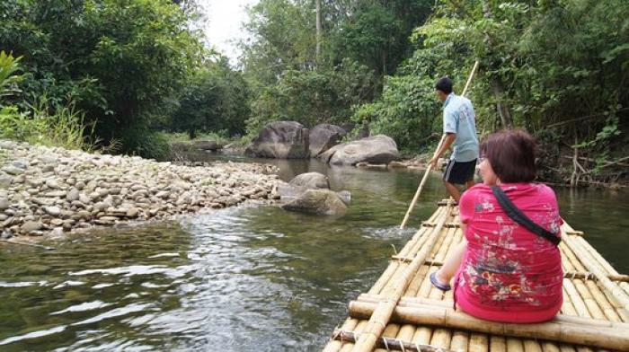 ล่องแพไม้ไผ่ + อาบน้ำช้าง 30 นาที + ขับรถ เอทีวี 30 นาที+ ชมถ้ำลิง + เดินป่าชมน้ำตก +อาหารเที่ยง + ชมศูนย์อนุรักษ์พันธุ์เต่าทะเล