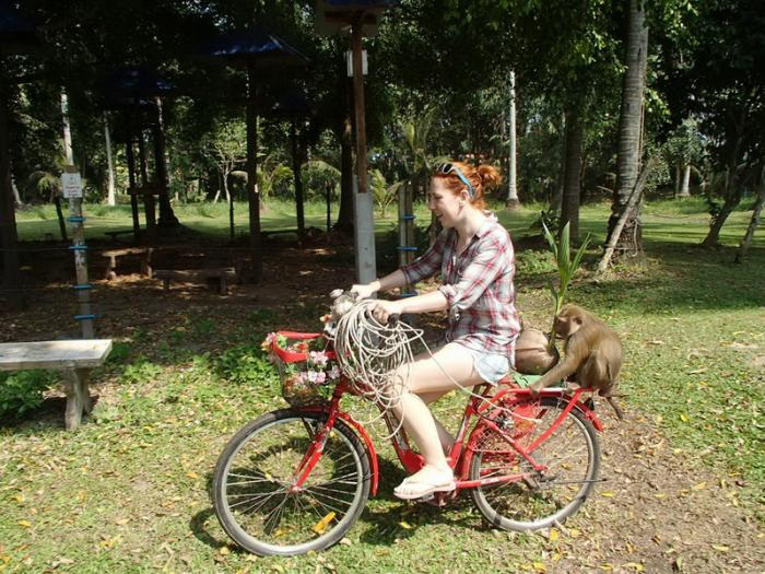 เที่ยวชมวิทยาลัยต้นแบบการฝึกลิง สัมผัสวิถีชุมชนลุ่มแม่น้ำตาปี (เดินทางจากนครศรีธรรมราช)