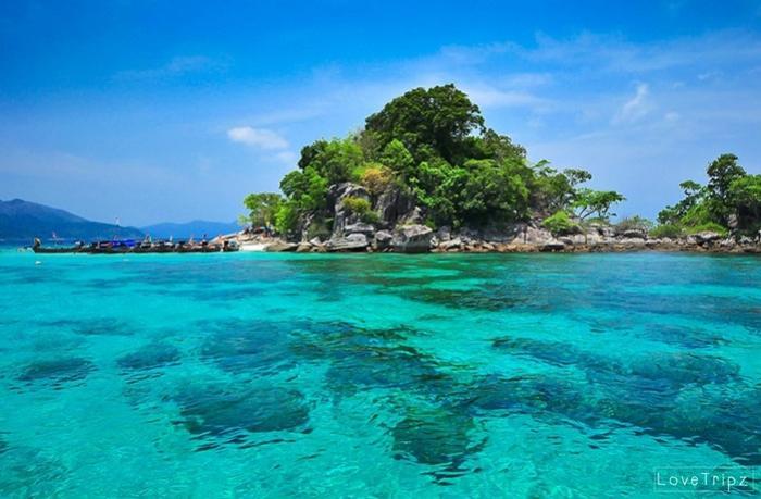 เที่ยวครึ่งวัน เกาะหลีเป๊ะ ดำน้ำโซนใน 4 เกาะ โดย เรือหางยาว