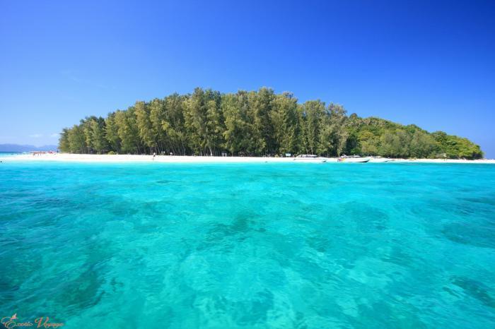 เกาะพีพี + เกาะไผ่ ด้วยเรือสปีดโบ๊ท