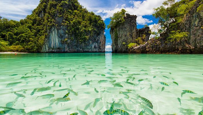 ทัวร์เกาะห้อง โดยเรือหางยาว เดินทางจากกระบี่ (วังทรายสปีดโบ๊ท)